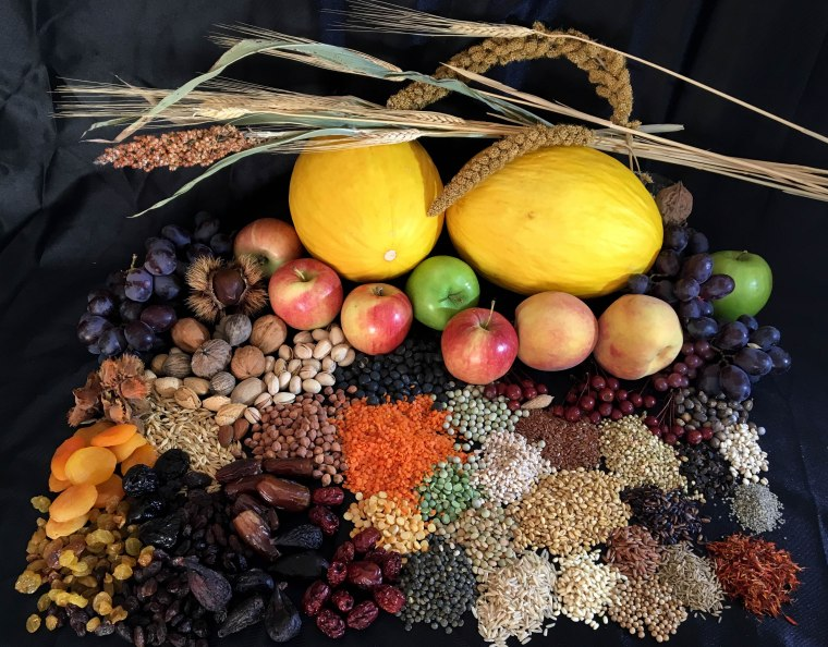 Fruits from the Sands