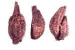 Apiaceae, cf. Artemisia, Tashbulak