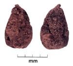 Malus or Pyrus, Tashbulak